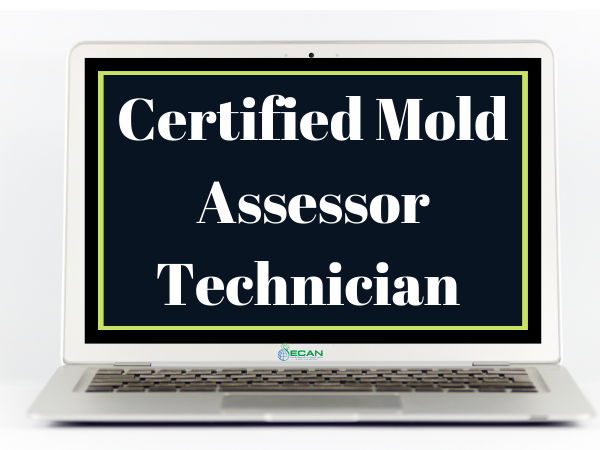 Certified Mold Assessor Technician Course