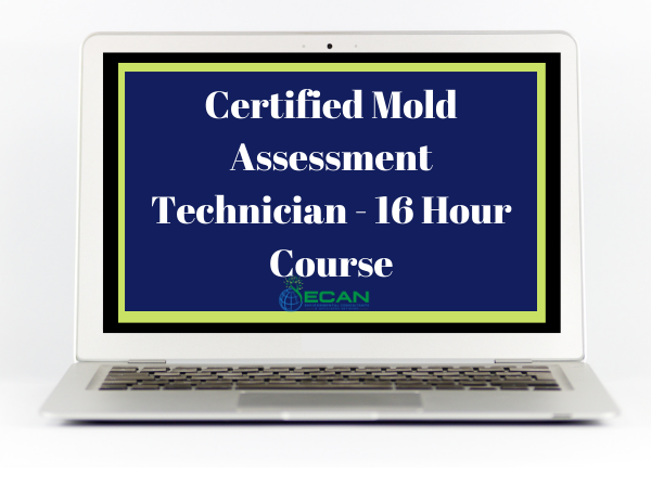mold assessment technician course