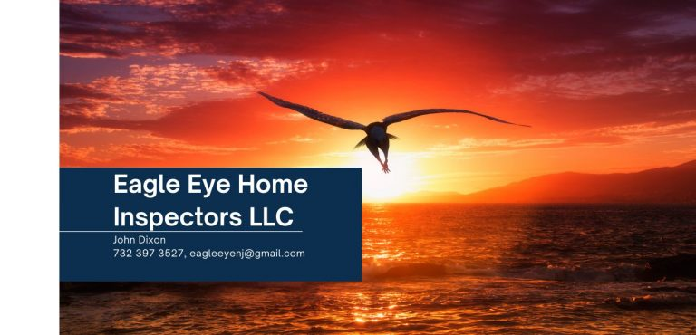 Eagle Eye Home Inspectors LLC Website 1 768x370